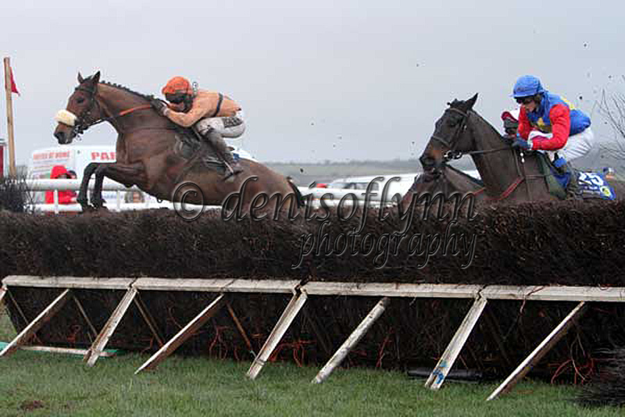 Forde in America leads from The Gorger in the Slaney Foods Maiden Race for 7yo and upwards