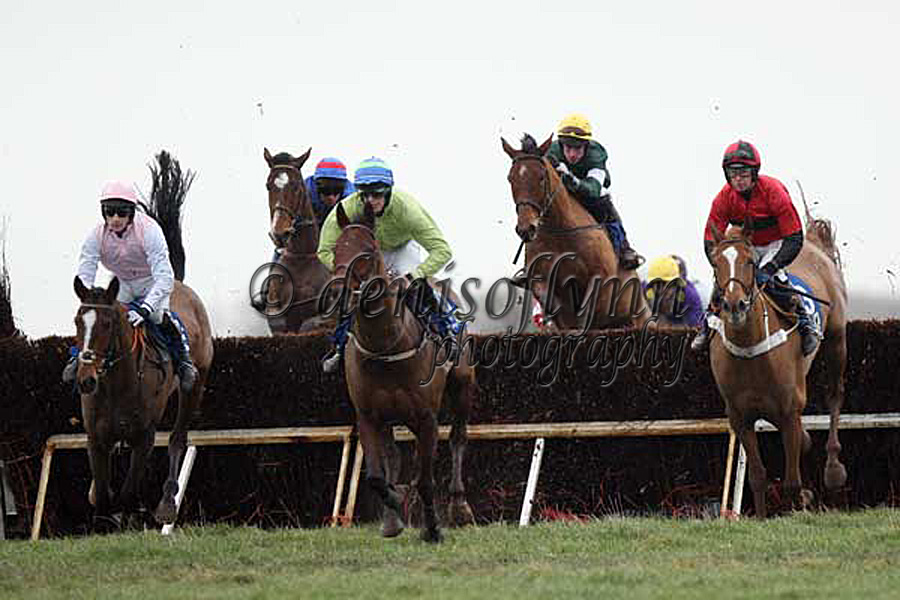 Rain Down - left, Next Surprise - centre, and Ballybough Andy over the 4th fence in the O'Brien's Saddlery Maidan Race for 5yo Geldings