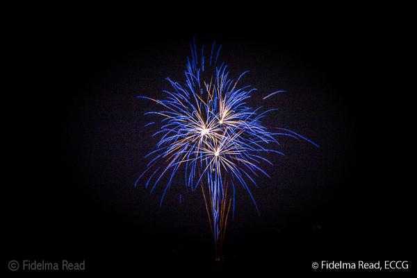 Fidelma Read-4