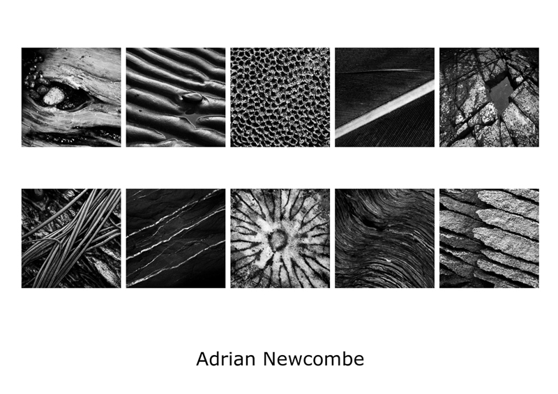 Panel 1st - Adrian Newcombe
