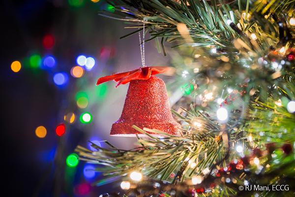 06 RJ Mani Christmas