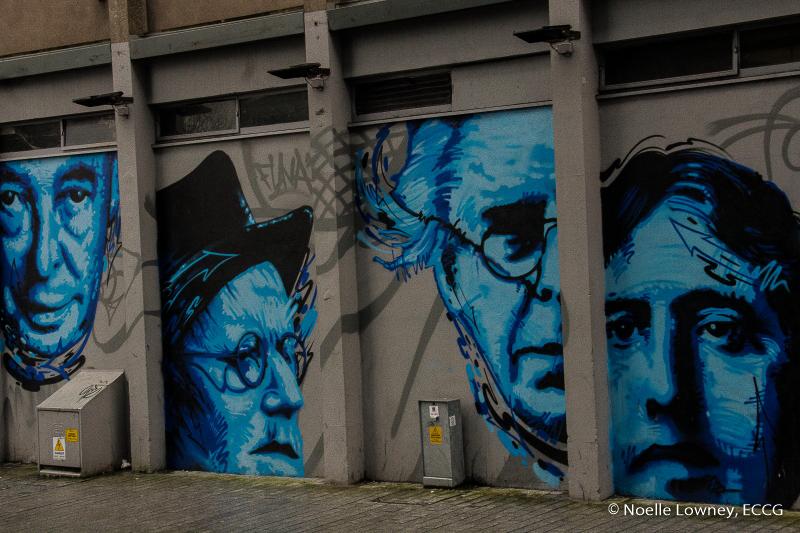 Cork City 13-02-16 NL-32