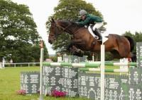 Camphire Horse 2016 EUpton-10