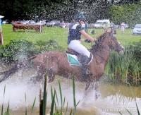 Camphire Horse 2016 JKeniry-8