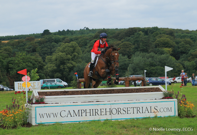 Camphire Horse 2016 NLowney-9